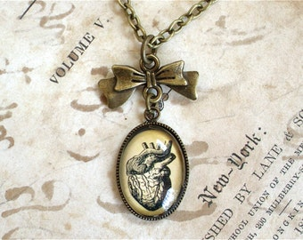 TINY Anatomical Heart Necklace with Bow - Antique Anatomy Print Pendant in Bronze or Silver