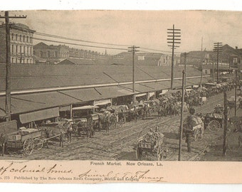 Vintage Postcard, New Orleans Louisiana, French Market, Horse and Buggy, 1904
