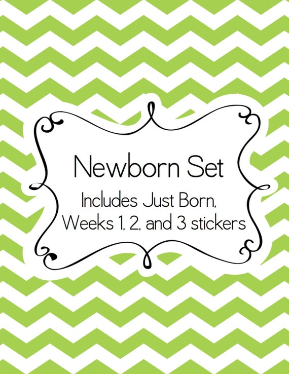 Newborn Set of Baby Stickers - Includes a Just Born Sticker plus Week 1, Week 2 and Week 3 Stickers - Baby Shower Gift for New Mom