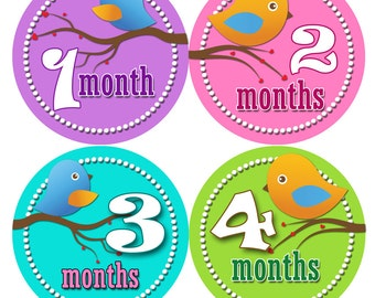 Baby Month Stickers - First Year Belly Stickers - Baby Month Stickers - Month to Month Stickers for Baby - Baby Shower Stickers GIRL BIRDIES