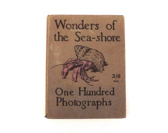 Wonders Of The Seashore by F. Martin Duncan Vintage Book of Black and White Photographs