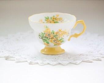 Yellow Rosina Tea Cup Bone China Made England