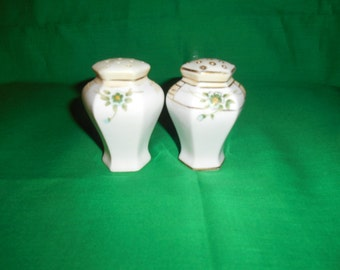 One (1), Pair of Hand Painted, Nippon, Porcelain, Salt & Pepper Shakers