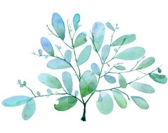 Blue Seaweed Printable Art, Botanical Illustration - Aqua, Turquoise and Green wall art, Beach home, Coastal decor - Digital Download