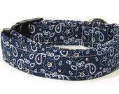 Paisley Dog Collar, Blue Paisley Dog Collar, FREE SHIPPING, dog collar, adjustable dog collar
