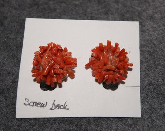 Vintage Unmarked Screw Back Round Coral Earrings Circa 1950s Tropical Look
