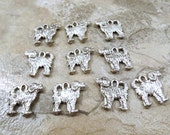 Set of 10 Pewter Portuguese Water Dog Charms - 5485