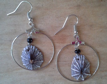 Kauai opihi shell earrings