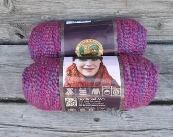 YARN SALE Lion Brand Homespun yarn in Ambrosia