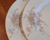 "Theodore Haviland New York ""Apple Blossom"" Set of Two Dinner Plates"