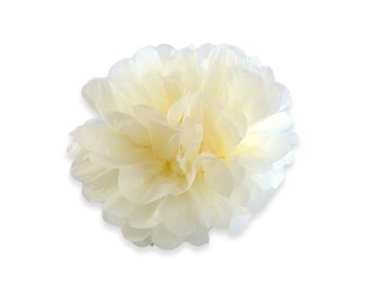 4 Inch Ivory Tissue Pom Poms - Paper Party Decor Decoration Supplies