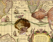 Altered Ancient Map Scrap Showing Oceans, America, Ships with Hand-applied Fish, Scallop, Conch Shell
