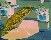 Paris Umbrella Sunny Flower Pots Pale Tangerine Shadow Blue Terra Cotta Summer Patio Terrace Garden