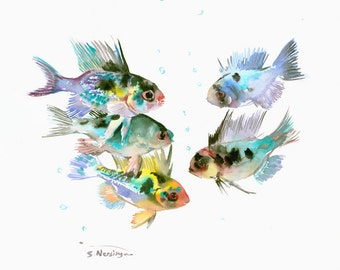 Blue Ram Cichlid, Original watercolor painting 14 x 12 in. blue fish aquarium art cichlid painting