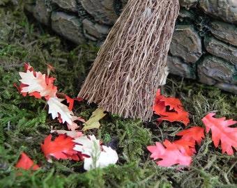 Botanical Miniature Dollhouse FAIRY GARDEN Succulent Accessories