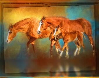 Horse Lover Horse family Trio mare foal colt equine child children nursery art colorful