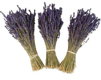 Lavender - Preserved Lavender - Provence Lavender - 2016 crop - Lavender Bunch - Lavender Bouquet - Bouquet - French Lavender -Wedding Decor