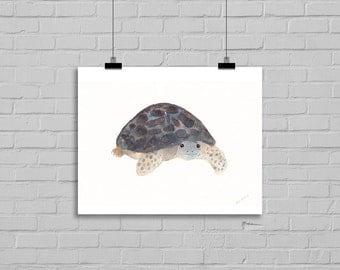 Clyde The Tortoise II Tortoise Print Art Print Watercolor Painting Watercolour Wall Art Watercolor