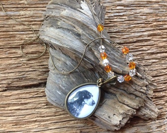 Smokey the bluetick hound necklace: UT Volunteers necklace