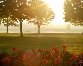 Peace for the Day, sunrise, river, park, flowers, arboretum
