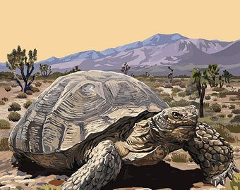 Lake Mead - National Recreation Area - Tortoise (Art Prints available in multiple sizes)