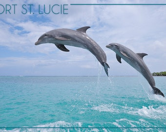 Port St. Lucie, Florida - Dolphins Jumping (Art Prints available in multiple sizes)