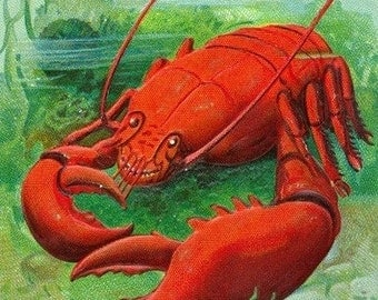 Oh You Lobster Scene (Art Prints available in multiple sizes)