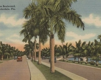 Ft. Lauderdale, Florida - Las Olas Blvd. (Art Prints available in multiple sizes)