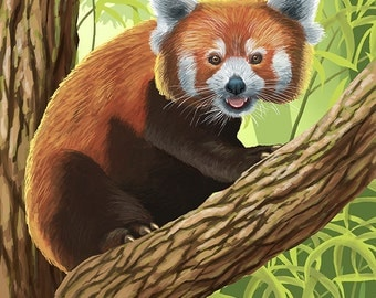 Visit the Zoo - Red Panda (Art Prints available in multiple sizes)