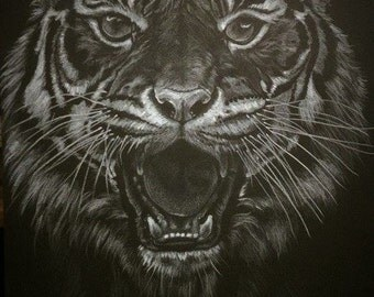 A3 sized signed print of my original drawing of a Siberian Tiger