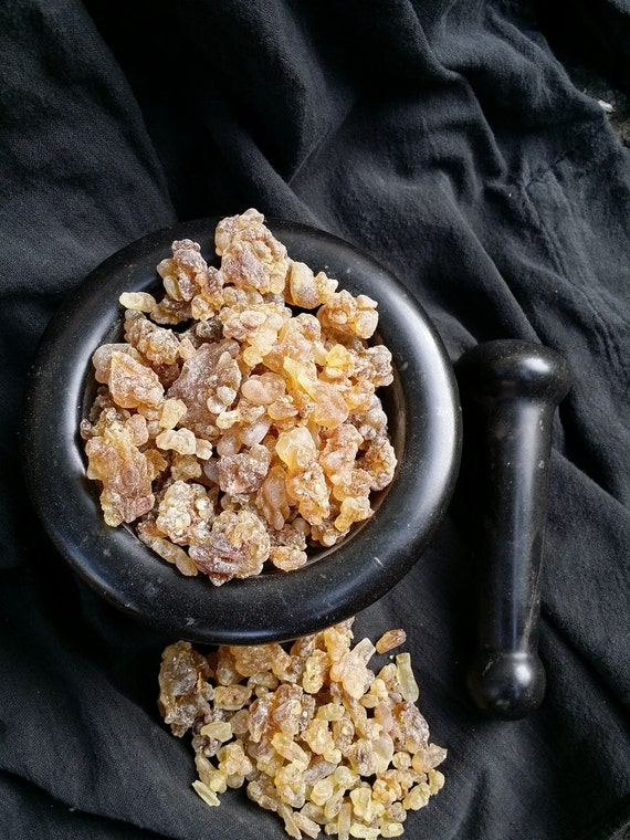 Fresh Frankincense Serrata. A source of Boswellic Acids. For incense, medicine, cosmetics and perfume.