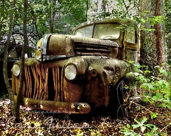 1946 Rusty Ford Truck in trees Photograph