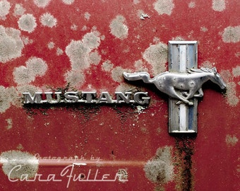 Red Ford Mustang Emblem Photograph