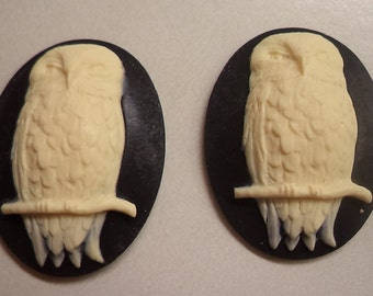 40mm x 30mm resin oval vertical Owl sitting on a perch ivory on black 2 pc lot l