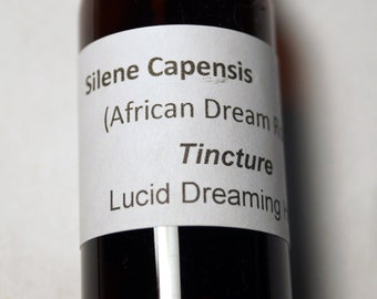 Lucid Dream Silene Capensis Tincture