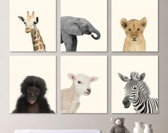 Baby Animal Nursery Art. Baby Animal Nursery Decor. Jungle Nursery. Jungle Nursery Art. Baby Animal Photos. Baby Animal Prints. (NS-528)