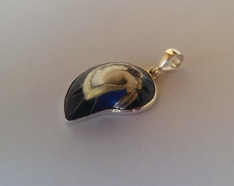 Handmade Sterling 925 silver and nautilus pendant.