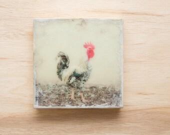 Rooster Original Art 8x8