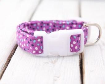 Purple Fabric Dog Collar : Extra Small 8-11 inches, Purple Fabric Dog Collar, Dog Collar, Fabric Dog Collar, Purple Collar, Adjustable Colla