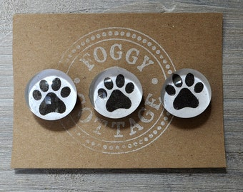 Glass Paw Magnets
