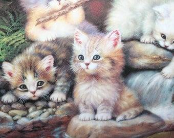 "Bradex Germany Am Seerosenteich ""By the Lily Pond"" Artist: Jurgen Scholz Kittens"