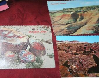 Arizona Postcards 1960's Vintage Ephemera