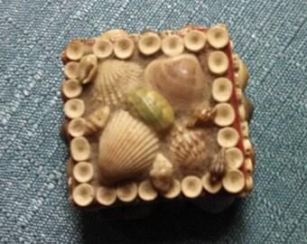 Vintage Shell Box