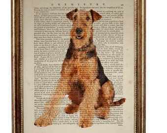 Airedale Terrier Dog Animal beautiful Art Print on Upcycled Dictionary Book page 8'' x 10'' inches