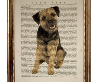 Border Terrier, beautiful Art Print on Upcycled Dictionary Book page 8'' x 10'' inches
