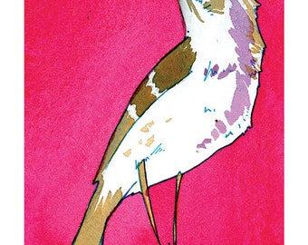 State Birds - Mockingbird