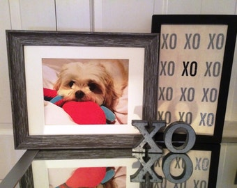 Turn Your Pet's Photo into a Cool Painting!
