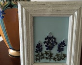 Quilled bluebonnets, blue flowers, white wooden frame, Texas bluebonnets, three flowers, birthday gift, gift for a friend