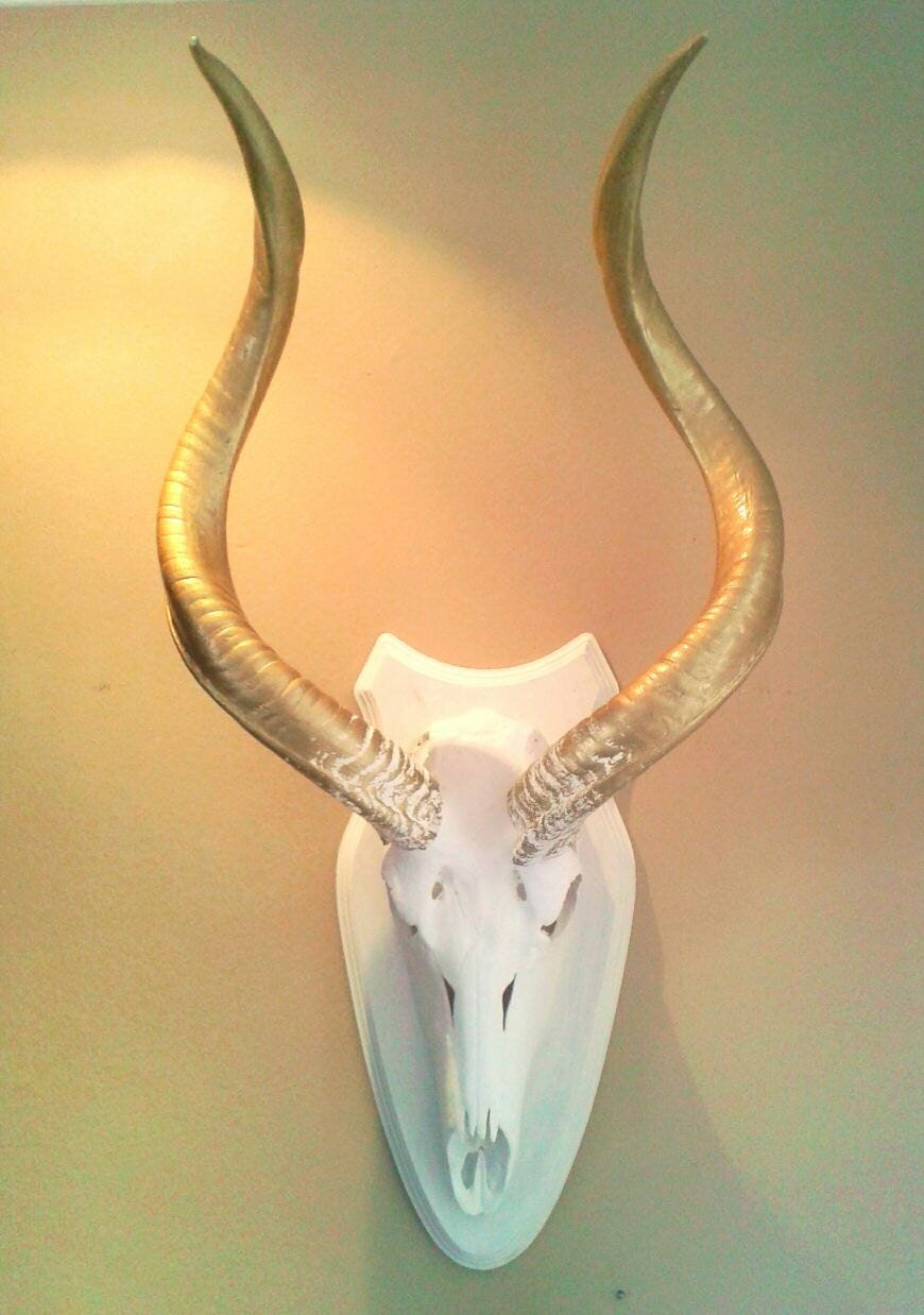 Kudu skull paint in white and gold typical African decor wall ...