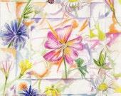 Wildflowers art Original Watercolor painting floral modern botanical michigan wildflower artwork